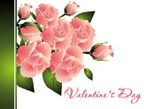 Bouquet of roses for Valentine's Day Royalty Free Stock Photos