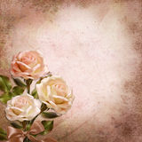 Bouquet of roses on a vintage background Royalty Free Stock Images