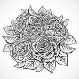 Bouquet of roses. Vintage black and white hand drawn vector illustration.  elements. Stock Image