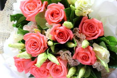 Bouquet of roses on white background Royalty Free Stock Photography