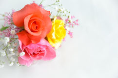 Bouquet of roses in white background. Bouquet of colorful roses in white background Royalty Free Stock Photo
