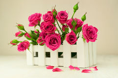 Bouquet of roses in a white box Stock Photo