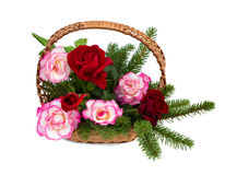 Bouquet of roses are in a wicker basket. On a white background Royalty Free Stock Image