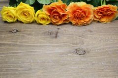 Bouquet of roses on a wooden background Royalty Free Stock Image