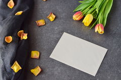 Bouquet of rosy and yellow tulips on a black abstract background, with dry petals. Space for text. Romance concept. Bouquet of rosy and yellow tulips on a black Royalty Free Stock Photography