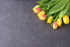 Bouquet of rosy and yellow tulips on a black abstract background. Space for text. Romance concept. Stock Image