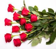 Bouquet rouge de roses Images libres de droits