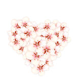 Bouquet sakura pink flowers in shape heart Stock Photo