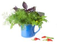 Bouquet for Salad Stock Photos
