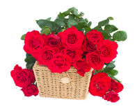 Bouquet of scarlet roses with basket Royalty Free Stock Photography