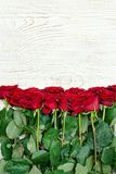 Bouquet scarlet roses on a light wooden background. Close up Royalty Free Stock Image