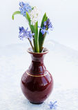 Bouquet of scilla Royalty Free Stock Photography