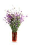 Bouquet sec Images stock