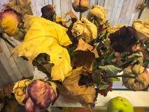 Bouquet sec de grand jaune d'automne des feuilles, herbier Le fond Texture photos stock