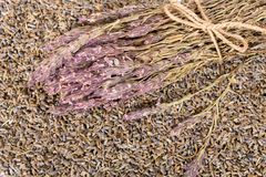 Bouquet sec de lavande avec la ficelle Image stock