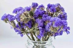 Bouquet sec de petites fleurs bleues abstraites Photo stock