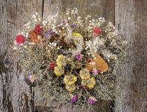 Bouquet sec de vintage de fleurs Photographie stock libre de droits
