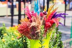 Bouquet sec par fleur Photo libre de droits