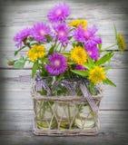 Bouquet of sedum and cornflowers Royalty Free Stock Photo