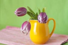 Bouquet sensible des tulipes pourprées dans une cruche jaune Image libre de droits