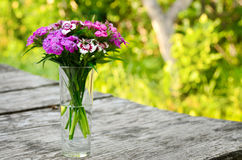 Bouquet of small carnations on a table in the garden Royalty Free Stock Image