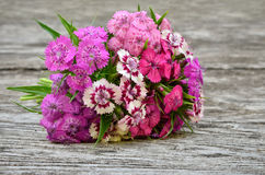 Bouquet of small carnations on a wooden background Royalty Free Stock Photos