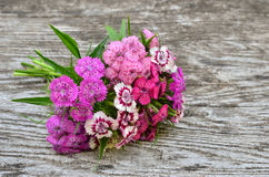 Bouquet of small carnations on a wooden background Stock Images