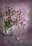Bouquet of small pink flowers Royalty Free Stock Photo