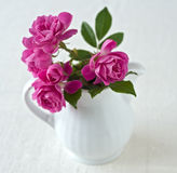 Bouquet of small roses. In a ceramic milk pitcher Royalty Free Stock Photos