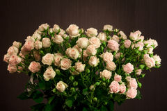 Bouquet of small roses beige Royalty Free Stock Photos