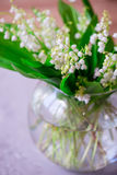 A bouquet of small white flower lily of the valley Stock Images