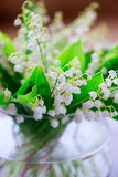 A bouquet of small white flower lily of the valley Royalty Free Stock Photography