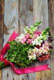 Bouquet of snapdragon (Antirrhinum majus) on vintage wooden boar Stock Images