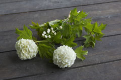Bouquet with snowball tree and lily of the valley Stock Images