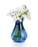 Bouquet of snowdrop flowers in glass vase, isolated on white Royalty Free Stock Image