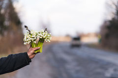 Bouquet of snowdrop in the hand extended forward, on the side of road Stock Photo