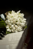 Bouquet of snowdrops. Laying on the piano keyboard Stock Photo