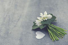Bouquet of snowdrops on gray stone  background with copy space f Royalty Free Stock Image