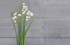 Bouquet of snowdrops on wood Stock Photos