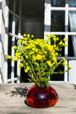Bouquet of spring beautiful fresh field yellow flowers tansy in the red glass vase on the wooden table in the garden. Tanacetum flowering plant royalty free stock photography
