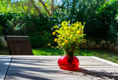 Bouquet of spring beautiful fresh field yellow flowers tansy in the red glass vase on the wooden table in the garden Royalty Free Stock Image