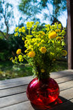 Bouquet of spring beautiful fresh field yellow flowers tansy in the red glass vase on the wooden table in the garden, tanacetum fl. Bouquet of spring beautiful stock photo
