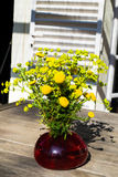 Bouquet of spring beautiful fresh field yellow flowers tansy in the red glass vase on the wooden table in the garden, tanacetum fl. Bouquet of spring beautiful stock image