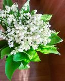 A bouquet of lily of the Valley royalty free stock photo