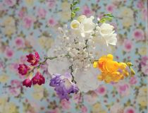 Bouquet of spring colors Stock Images