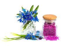 Bouquet of spring flower with lavender aroma salt. Isolated on white background Royalty Free Stock Photography