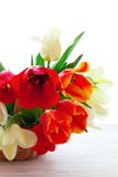 Bouquet of spring flower tulips Stock Image