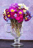 Bouquet of  the spring flowers Stock Images