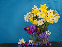 Bouquet of  the spring flowers Royalty Free Stock Image