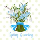 Bouquet of spring flowers stock illustration